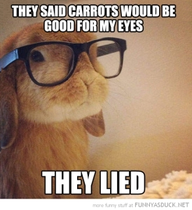 funny-cute-bunny-rabbit-glasses-eat-carrots-pics